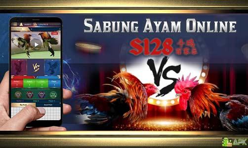 Agen S1288 Judi Sabung Ayam Online 24 Jam Terpercaya